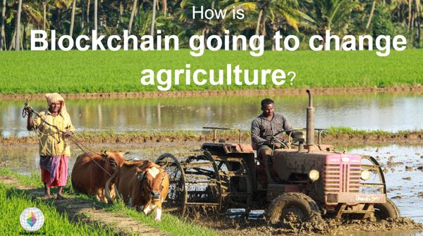 How is blockchain going to change agriculture?